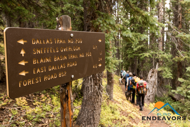 A directional sign stands near a trail in the forest with the team hiking down the Dallas Trail No 200